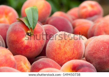 Fresh and juicy peach fruits - stock photo