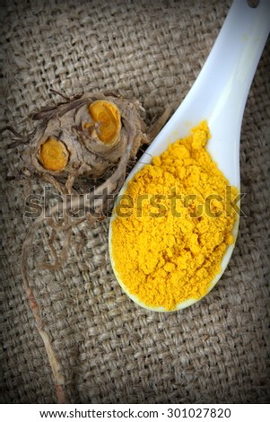 Fresh and powder turmeric with rug gunny sack on background