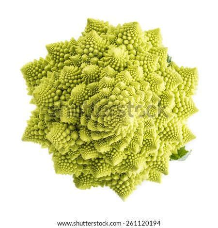 Fresh and raw romanesco broccoli vegetable isolated on white background - stock photo