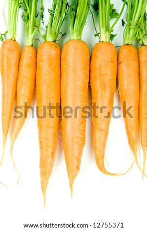 Fresh and ripe bunch of orange carrots isolated on white background