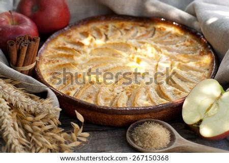 Fresh apple cake - stock photo