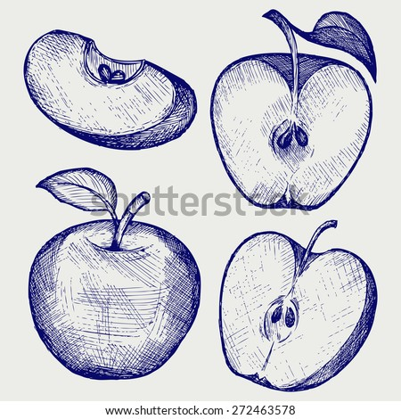 Fresh apple with leaf and slice. Doodle style. Raster version - stock photo