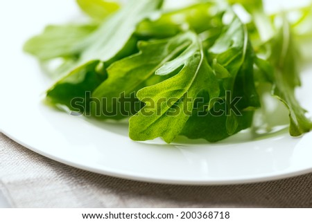 Fresh arugula leaves in white plate on table cloth. Selective focus. Shallow DOF - stock photo