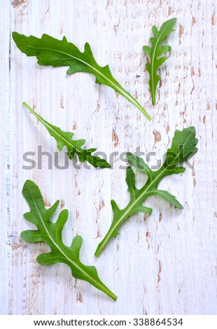 Fresh arugula / salad rocket / roquette / rucola leaves