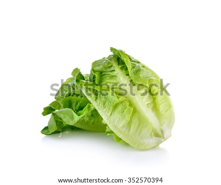 fresh baby cos (lettuce) on white background