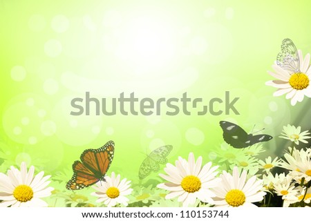 Fresh background of daisies and butterflies - stock photo