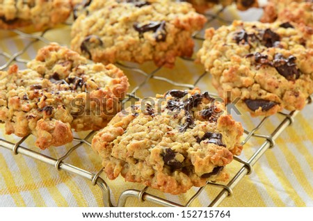 Fresh baked chocolate chip oatmeal cookies on metal cooling rack - stock photo