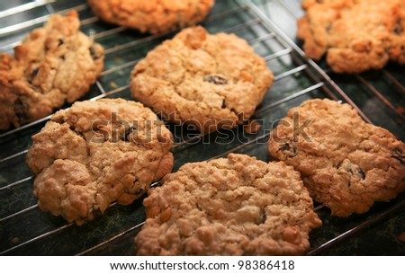 Fresh baked cookies on cooling rack - stock photo
