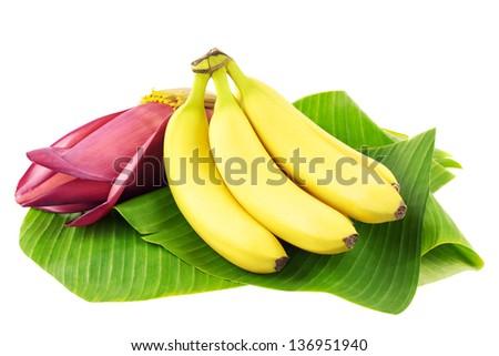 Fresh banana fruits with a banana blossom on banana leaves - stock photo