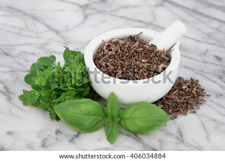 Fresh basil herb types with dried tulsi holy basil in a mortar with pestle over marble background. - stock photo