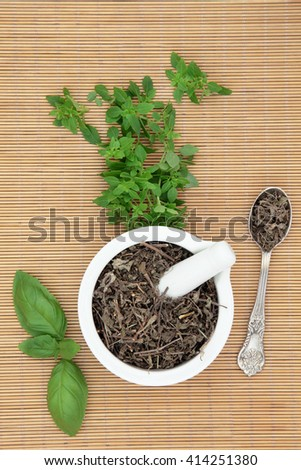 Fresh basil herb varieties with dried tusli holy basil in a mortar with pestle and silver spoon used in natural herbal medicine over bamboo background. - stock photo