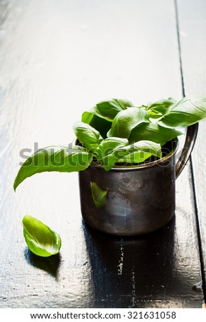 Fresh basil in vintage cup.