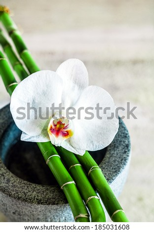 Fresh beautiful pure white orchid with green bamboo shoots lying on a stone container conceptual of alternative health, spa treatments and wellness with shallow dof and copyspace - stock photo