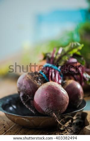 Fresh beetroot from garden soil on farmhouse wooden table - stock photo