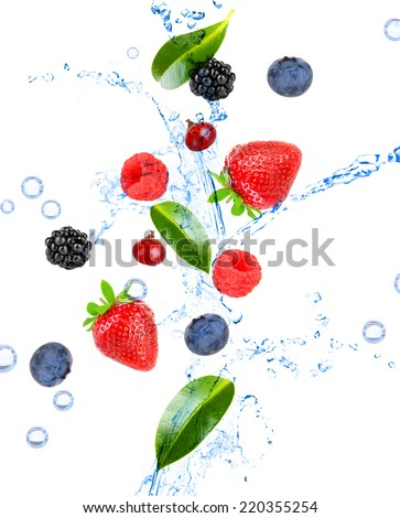 Fresh berries and green leaves with water splash, isolated on white