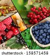 Fresh berries collage - stock photo