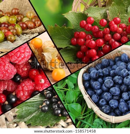 Fresh berries collage - stock photo