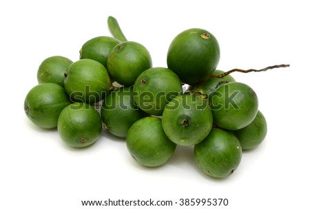 fresh Betel nut fruits isolated on white backgroun