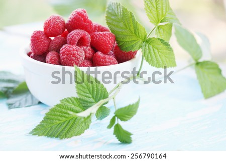 Fresh big juicy raspberry in a bowl - stock photo