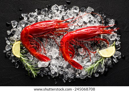 Fresh big red shrimp on ice on a black stone table top view - stock photo
