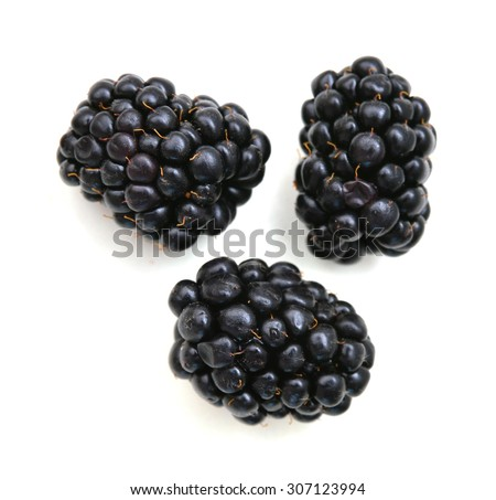 Fresh blackberry on white background - stock photo