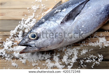 fresh blue fin tuna from market wit salt on wooden photo in sunlight - stock photo
