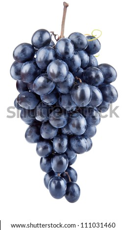fresh blue grape fruits isolated on white background
