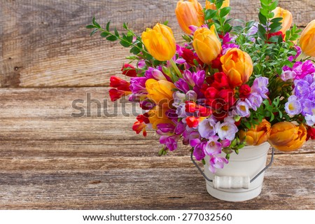 fresh blue, violet  and red freesia and orange tulip flowers  on wooden background - stock photo