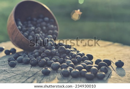 Fresh blueberries in a basket on wooden table - stock photo