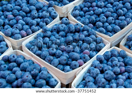 Fresh blueberries in baskets at the market