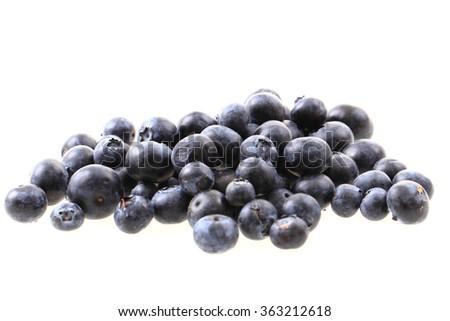 fresh blueberries isolated on the white background - stock photo
