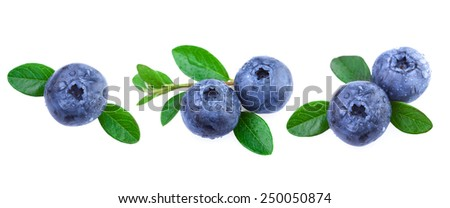 Fresh Blueberries with Leaves - stock photo