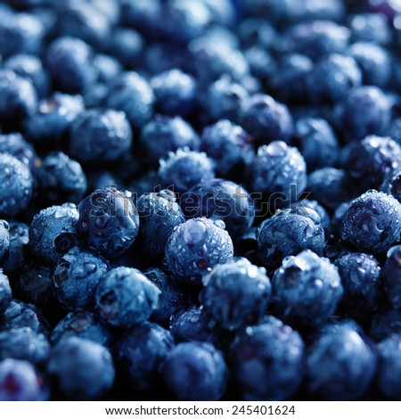 fresh blueberries with water droplets - stock photo