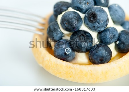 fresh blueberry cream cupcake homemade closeup macro