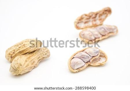 Fresh boiled peanuts on white background  - stock photo