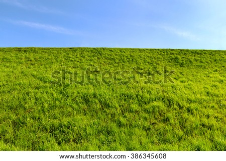 Fresh bright green lawn on hill and clear blue sky at summer day