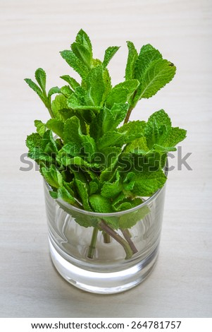 Fresh bright mint leaves on the wood background