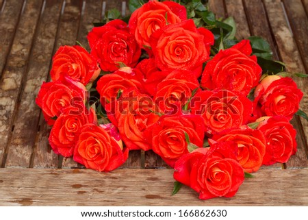Fresh Roses With Water Fresh Bright Orange Roses in
