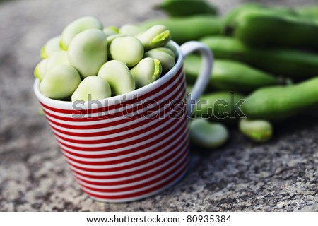 fresh broad beans - fruits and vegetables