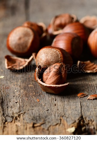 Fresh brown hazelnuts as background in closeup