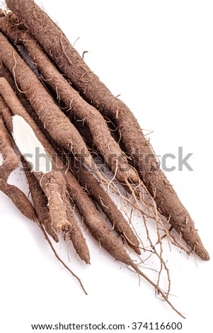 Fresh bunch of Black salsify, one cut and with white background - stock photo