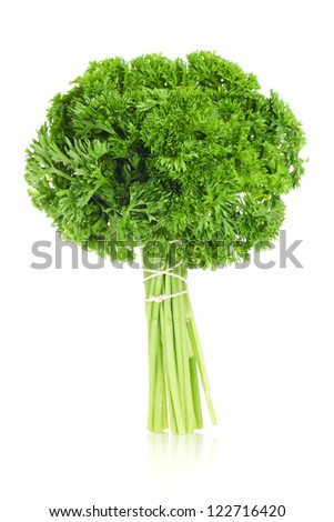 fresh bunch of parsley isolated on white - stock photo