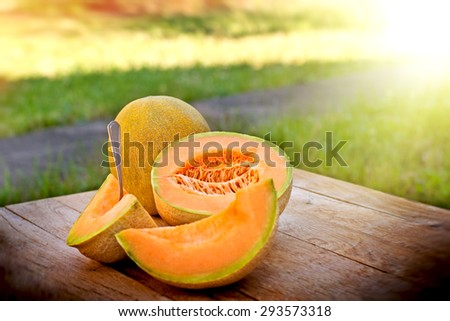 Fresh cantaloupe  - stock photo