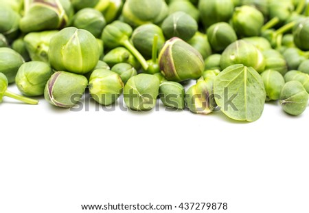 Fresh capers on white