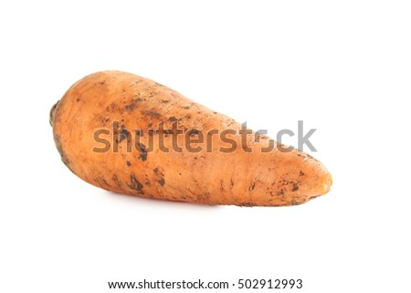 Fresh carrot isolated on a white