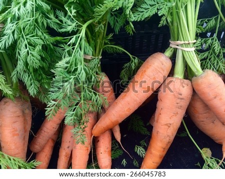 Fresh carrots at a Farmers Market in Los Angeles, California