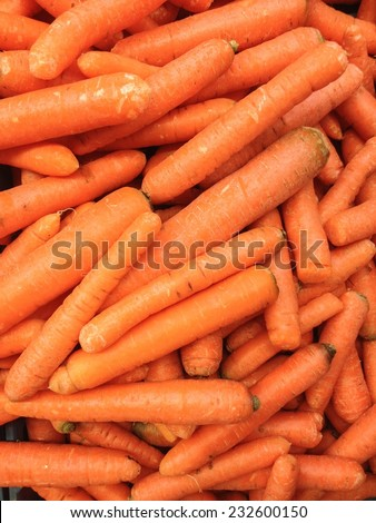 Fresh carrots for sale at market - stock photo