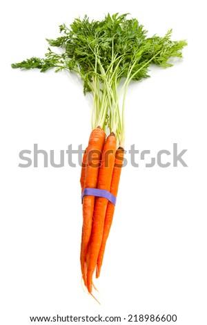 Fresh carrots studio isolated on white background - stock photo