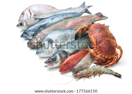 Fresh catch of fish and other seafood isolated on white background - stock photo