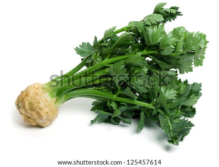 Fresh celery root with leaves on a white background - stock photo